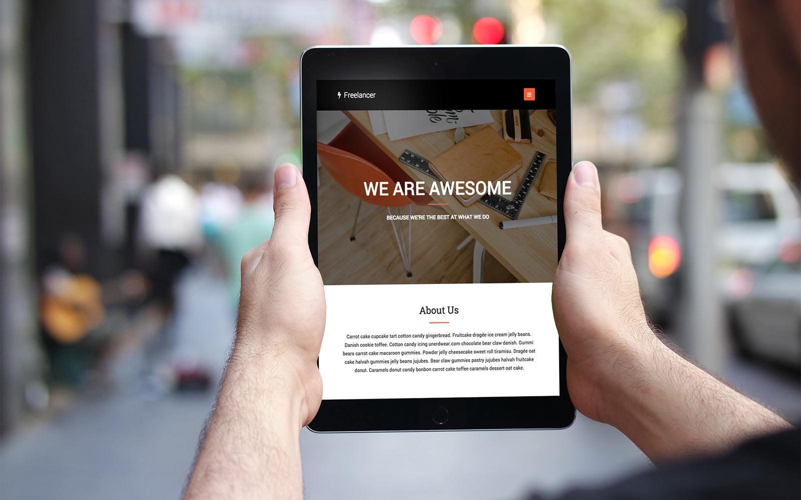 Freelancer Website